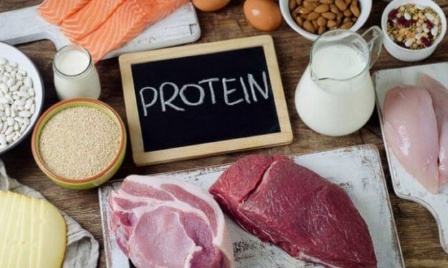 Healthy Foods High in Protein Low in Fat