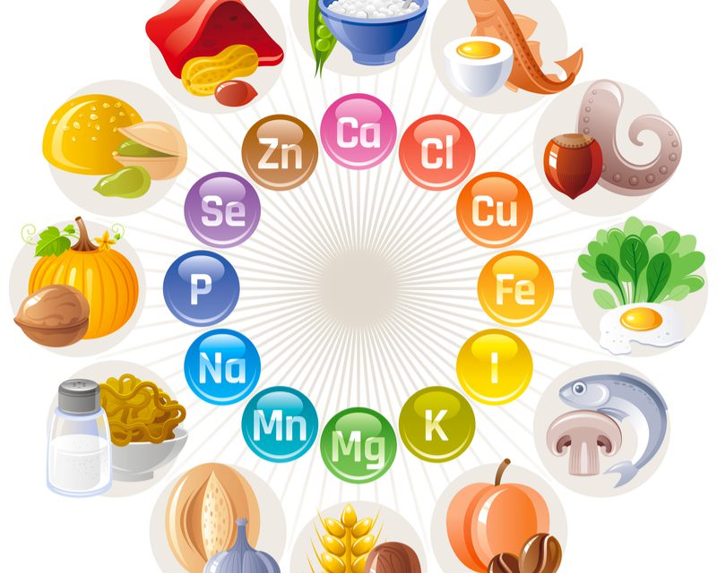 A Better Understanding Of Food And Nutrition