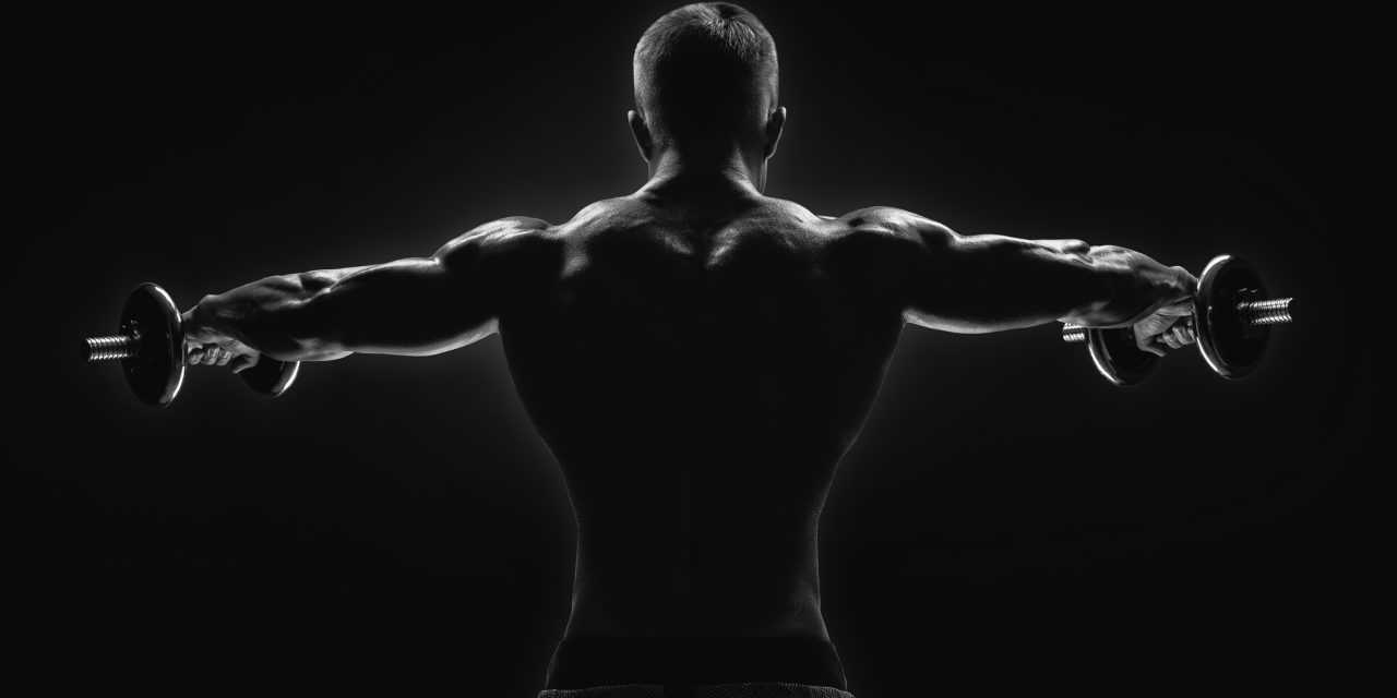 Dumbbell Shoulder Workout | With Video's & Tips