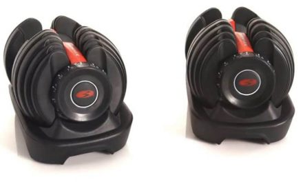 Bowflex Adjustable Dumbbells 552 Review
