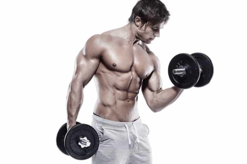 bodybuilder holding two dumbbells