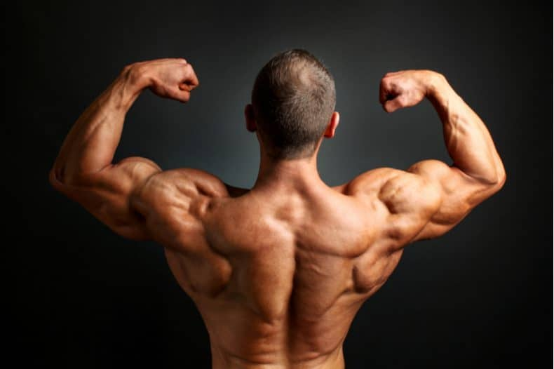bodybuilder pose, shoulder muscles