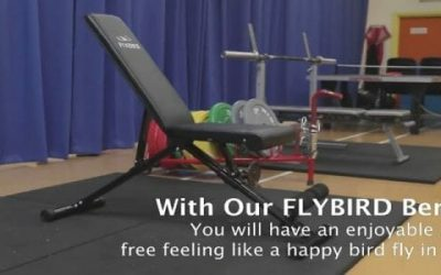 Flybird Adjustable Weight Bench