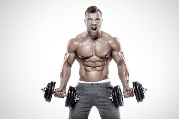very fit bodybuilder standing holding two dumbbells