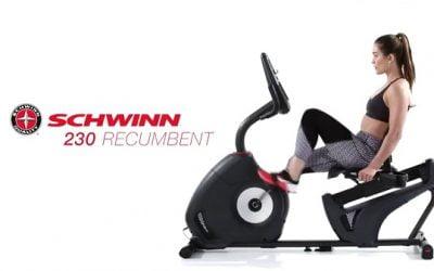 Schwinn Recumbent Bike 230 Review