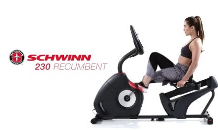 Schwinn Recumbent Bike 230 Review