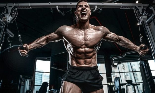Amino Acid – Training For Size And Strength