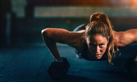 One Set Workout Routine
