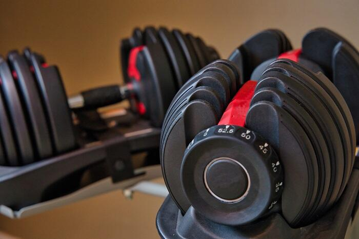 pair of block adjustable dumbbells on stand