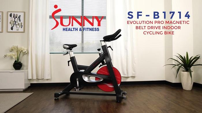Sunny Health & Fitness SF-B1714 evolution pro in front room of house