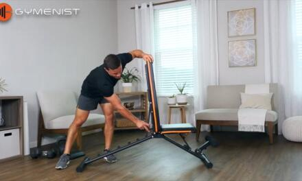 Everything You Need To Know About The Gymenist Exercise Bench