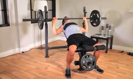 Everything You Need To Know About The Impex Competitor Weight Bench